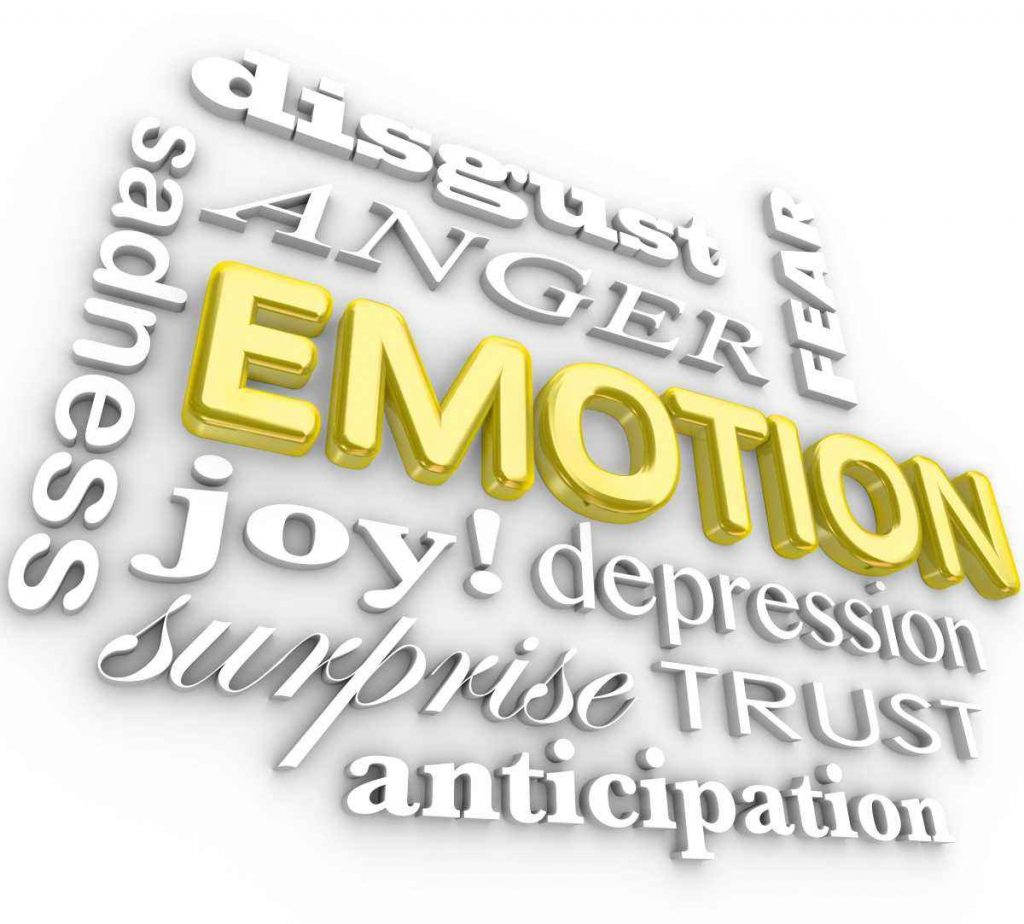 Words that convey emotion - disgust, anger, fear, sadness, joy, depression, surprise, trust, anticipation