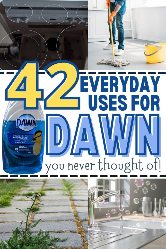 Pin reads 42 everyday uses for Dawn you never thought of. Pin contains 4 images: 1st image is glass top stove cleaned using Dawn; 2nd image is of a woman mopping her tile floor with Dawn; 3rd image is a interlocked patio with weeds that will be killed with a Dawn mixture between the bricks; 4th image is a sparkling clean kitchen faucet and sink with Dawn bubbles floating